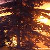 WJB__20081202_307