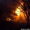 WJB__20081202_302