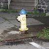 WJB__2009_08_02_0061