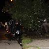 WJB__2009_08_02_0048