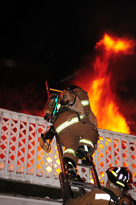 Firefighter Brian Wolf of Rescue 7 carries a dog down a ladder to safety after the dog ran out of the burning home onto the second floor balcony.