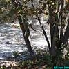 WJB__2009_09_20_0278