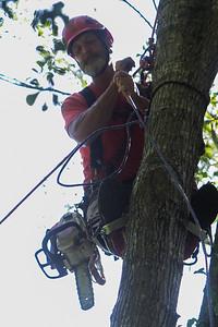2019-07-13-nhfd-lauren-oaks-dr-mjl-018