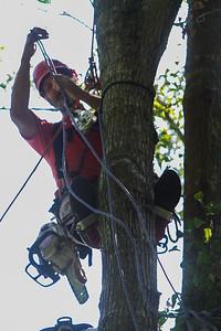 2019-07-13-nhfd-lauren-oaks-dr-mjl-017