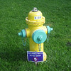 Grand Canyon hydrant