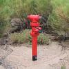 Tonto Hills, AZ hydrant