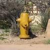 Scottsdale, AZ hydrant