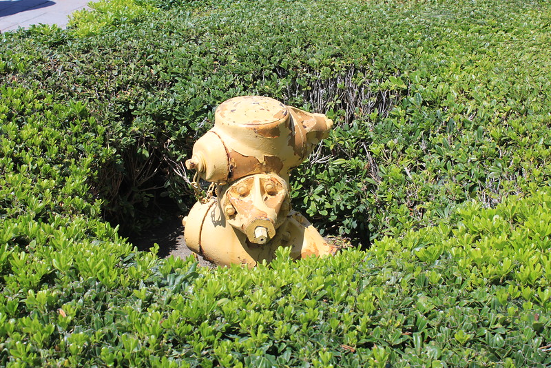 Hydrant San Diego