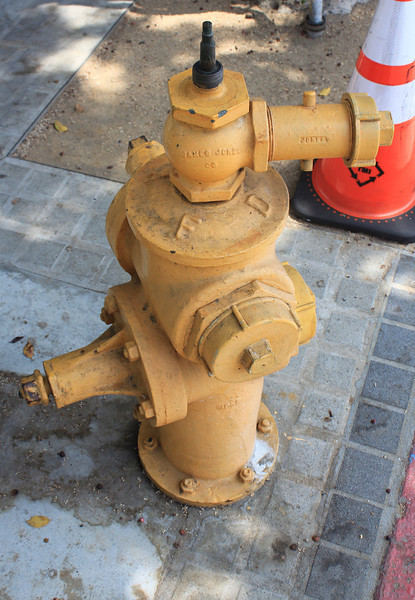 Hydrant LA City FD with connection