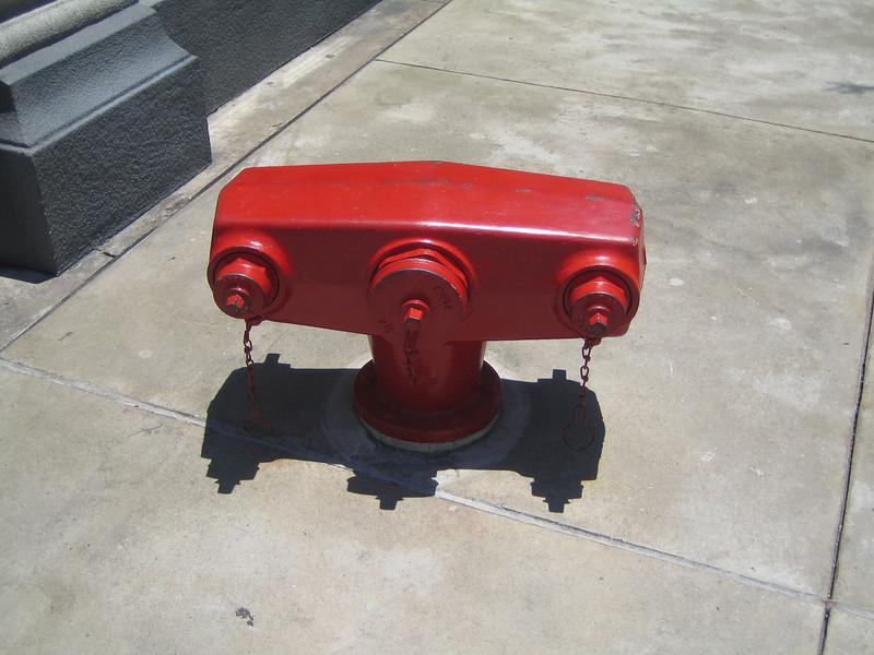 Disneyworld hydrant
