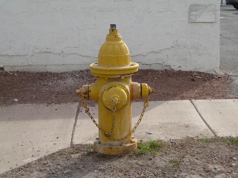 Phoenix hydrant
