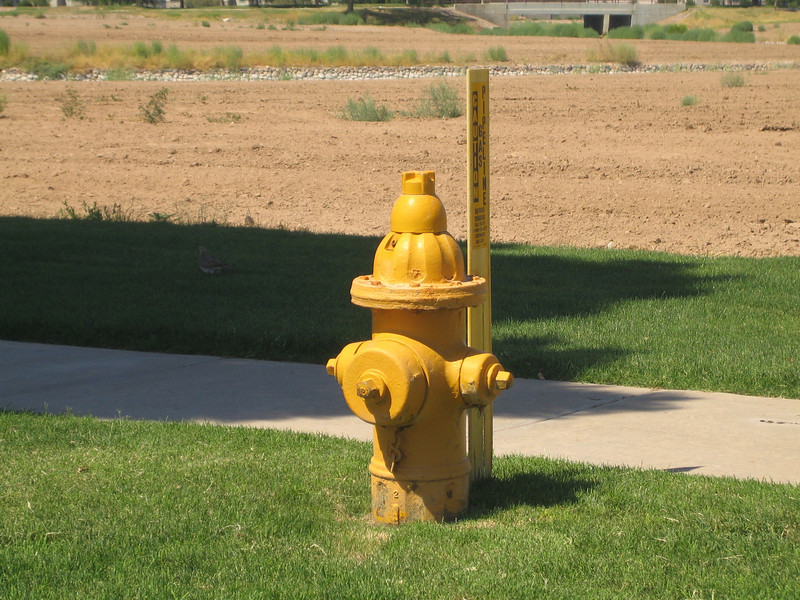 Chandler, AZ hydrant with gas sign