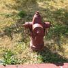 Portland, OR hydrant