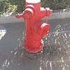 Hydrant Avondale