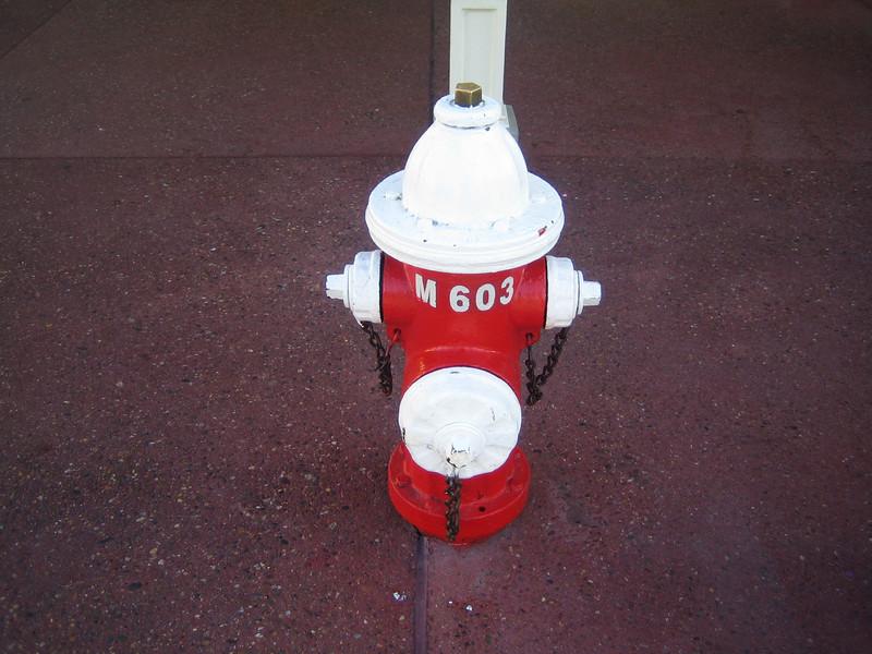 Disneyworld hydrant Main St