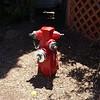 Hydrant San Diego 2