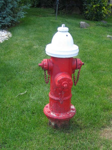 Totowa, NJ hydrant