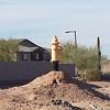 Hydrant Phoenix (tall)