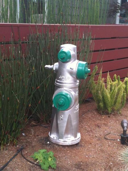 Hydrant Carmel, CA - by Mom