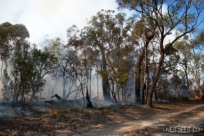 The burn is locked in on the North Western edge