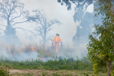 Firefighters lighting the grass