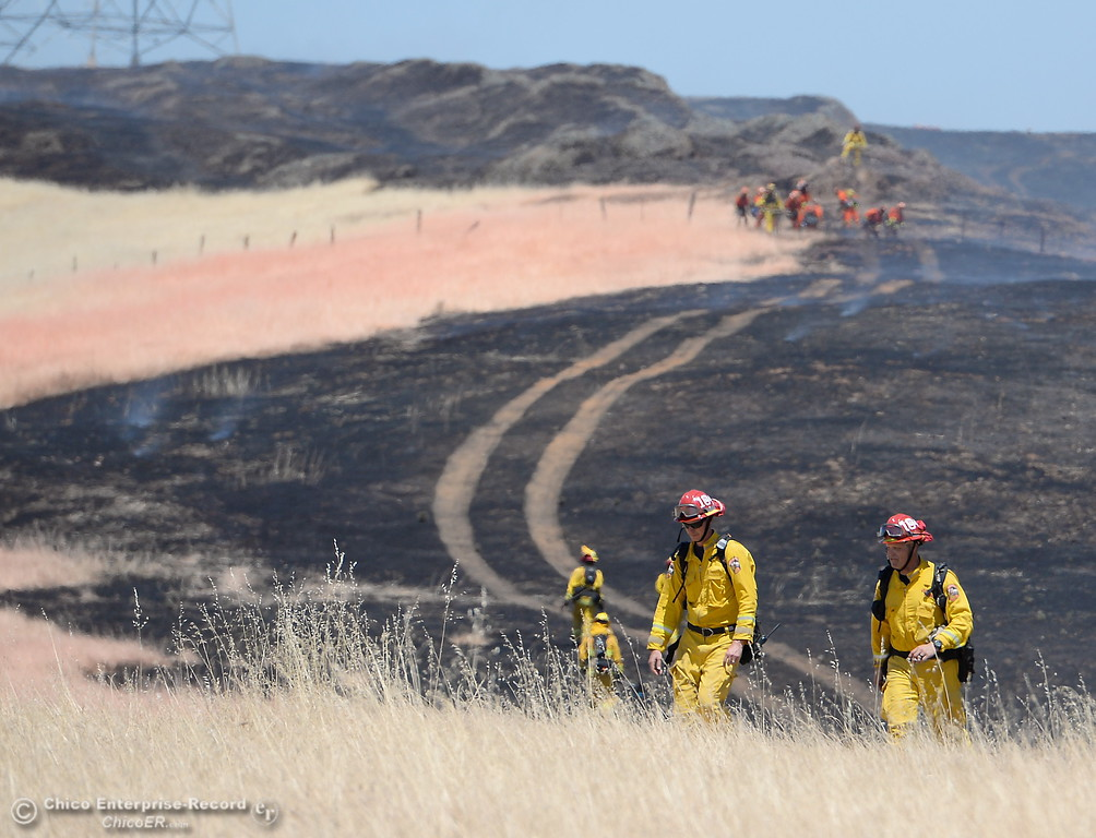 . Firefighters work on a grass fire seen along Nelson Road in Oroville, Calif. Tues. June 6, 2017. (Bill Husa -- Enterprise-Record)