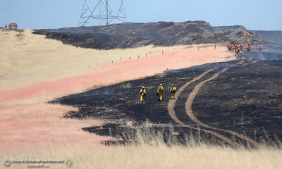 Firefighters walk through the burn of a grass fire that burned approx. 91 acres along Nelson Road in Oroville, Calif. Tues. June 6, 2017. (Bill Husa -- Enterprise-Record)