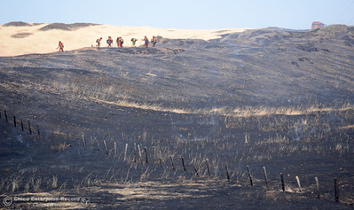 A crew is seen along a ridge top as firefighters work on a 91 acre fire seen along Nelson Road in Oroville, Calif. Tues. June 6, 2017. (Bill Husa -- Enterprise-Record)