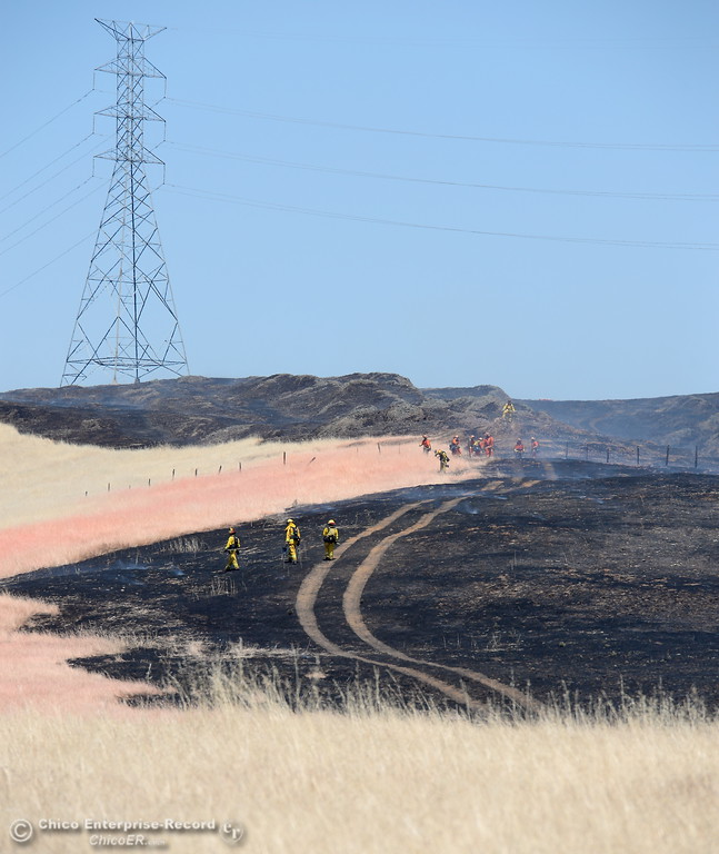 . Firefighters walk through the burn of a grass fire that burned approx. 91 acres along Nelson Road in Oroville, Calif. Tues. June 6, 2017. (Bill Husa -- Enterprise-Record)