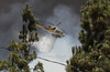 """Fish IC"" LACoFD Brush Fire - June 20, 2016"