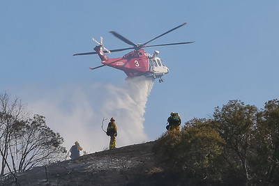 Griffith Park IC - LAFD Brush Fire - September 5, 2015