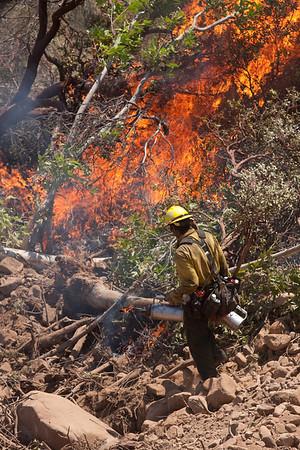 La Brea Wildfire - Los Padres NF