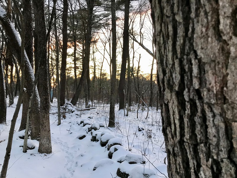 Snow covered a stone wall along on a trail near the Shawsheen River in Billerica. Photo by Mary Leach
