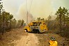 05/15/2014 12:00 hrs Ridge Brush Fire-Lambui : Brush fire in Ridge Thursday, May 15, 2014.  The Ridge F.D. responded at approx. 12:00 p.m. to reports of an odor of smoke in the area on Whiskey Road near Wading River Hollow Road. With the assistance of a SCPD helicopter, the fire was located in an area to the south of Whiskey Road (approx. a 1/2 mile into the woods to the northwest of the RCA radio antennae). With winds beginning to increase, Ridge F.D. Chief Michael Gray requested the assistance of at least 9 surrounding dept.'s to battle the large area of brush and high volume of fire that was encountered by his first arriving units. The fire was placed under control at approx. 3:00 p.m. with mop-up operations continuing into the late afternoon. The following dept.'s were on scene:  Ridge, Brookhaven, Yaphank, Manorville, Wading River, Rocky Point, Miller Place, Coram, Gordon Heights, and Middle Island.