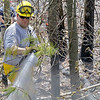 Firefighters fight a brush fire off of Wachusett Street in Leominster  on Monday around noon. Spraying down the fire is Sterling Lt. Dan Hehir. SENTINEL & ENTERPRISE/JOHN LOVE