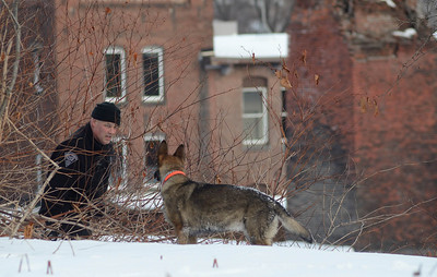 A Mass State Police K9 and trooper search a banking directly across from  276 Kimball St, Fitchburg in the search for the missing 5 year old from that address about 8 a.m. on Dec 21st, 2013