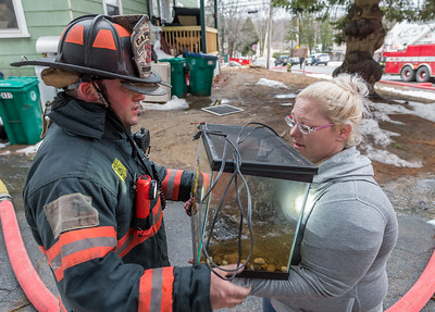 Captain Anthony Marrama returns a turtle to a resident from a working fire on Princeton Rd. SENTINEL&ENTERPRISE/ Jim Marabello