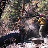 Howard Fire, Riggins, ID The Payette NF iao Broken Leg Trail