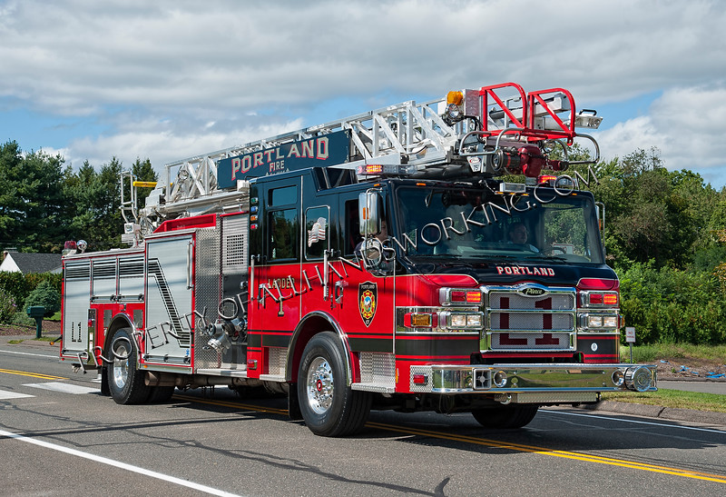 Portland Ladder 1