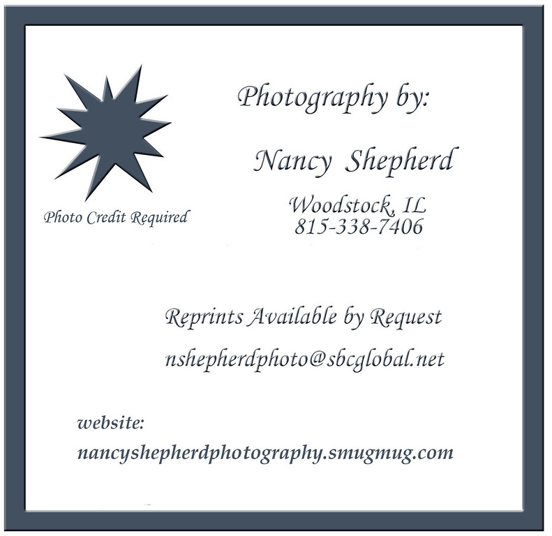 Photography by Nancy Shepherd