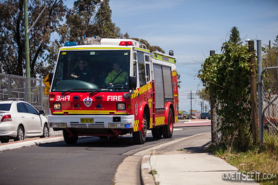Grass Fire - Regents Park (Sydney)