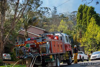 Davidson Hazard Reduction Burn