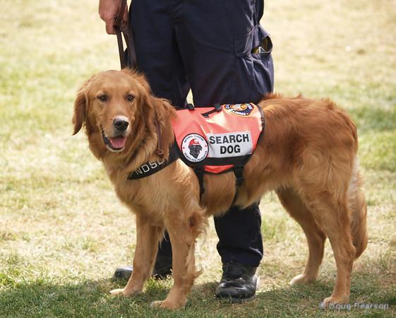 LA County Fire Department, Fire Service Day in Norwalk<br /> Rescue Dog