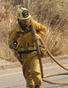 LA County Engine 171 firefighter pulls a protection line during the Sayre Fire.