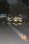 Monday, June 28th, 2021: the Roosevelt Fire Dept. operated on the scene of a car versus pole on Park Avenue off Lafayette Place. There was no entrapment and as many as three people injured. All units were under the command of Chief Martin [7300].