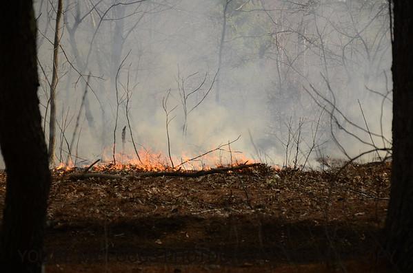 Uniondale Brush Fire