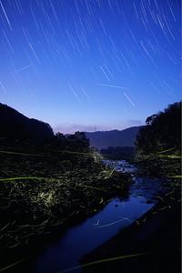 Firefly-035