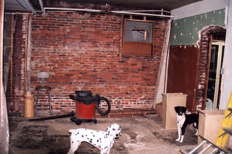 With the help of some dogs, I will be workling on the kitchen project over the next few months.