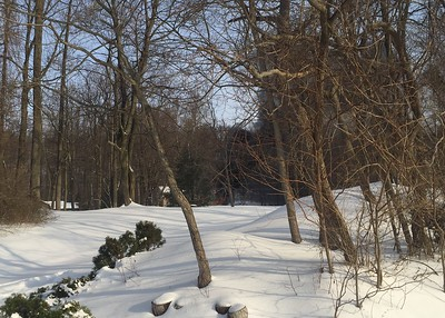 3.15.2017 - 98 West Neversink Rd (Exeter Twp)