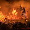 Heavy fire on Elizabeth lake Road. Lake Fire. 08-12-2020